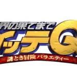 イッテQ 2014 スペシャル 雪合戦 メンバー カレンダー情報